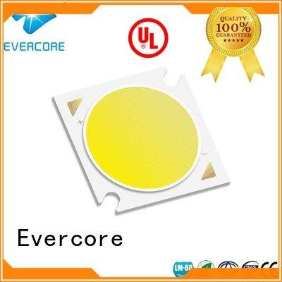 led chip led cob Flip Chip Evercore Warranty