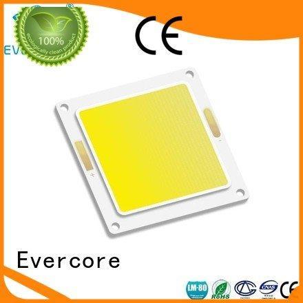 Evercore Brand cob led chip led led
