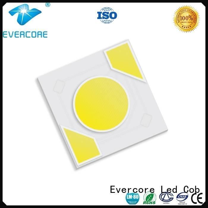 Evercore Brand modules led warm light ac cob