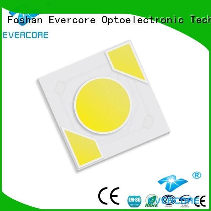 Hot warm light modules cob led Evercore Brand