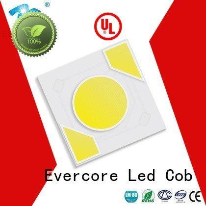 warm light cob Light Engine COB Modules Evercore Brand