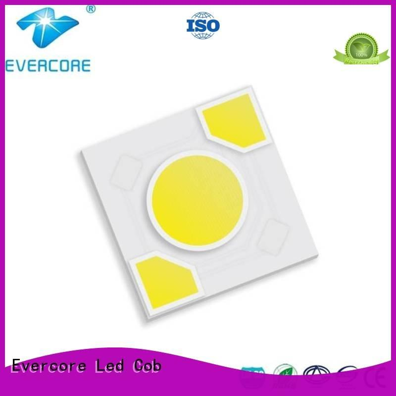 warm light ac Light Engine COB Modules Evercore