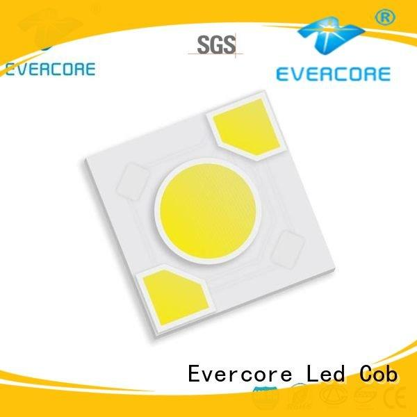 Evercore cob modules ac warm light led