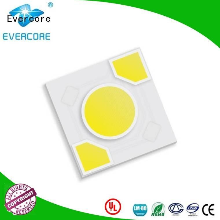 Evercore Brand ac warm light led modules
