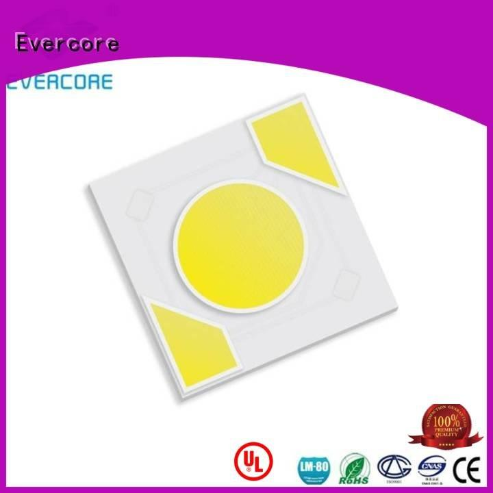 warm light led Evercore Brand Light Engine COB Modules