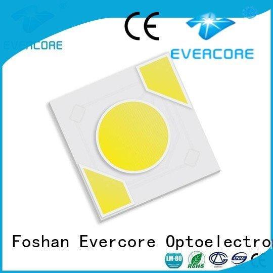 Evercore Brand modules ac warm light cob led