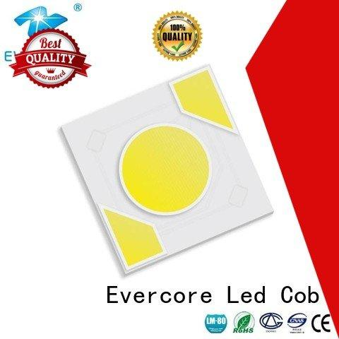 Evercore Brand modules Light Engine COB Modules