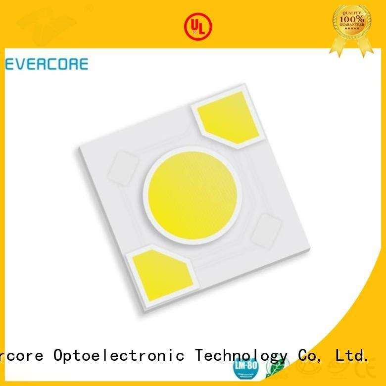 Evercore modules cob warm light