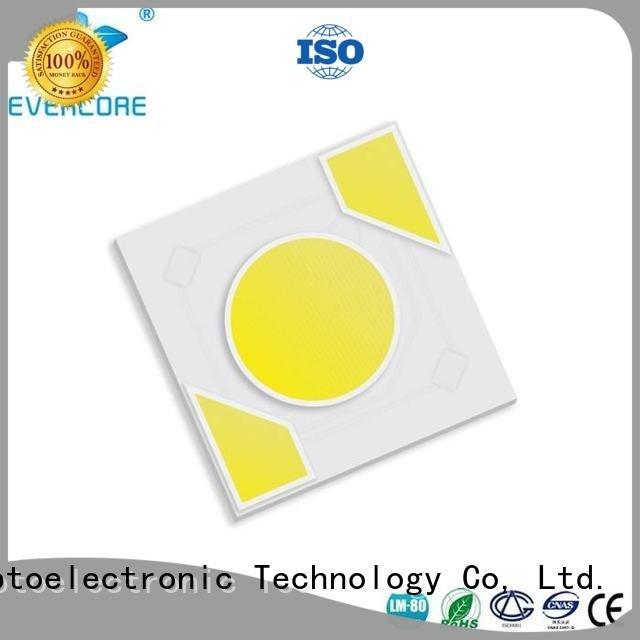 Evercore Brand cob led ac Light Engine COB Modules