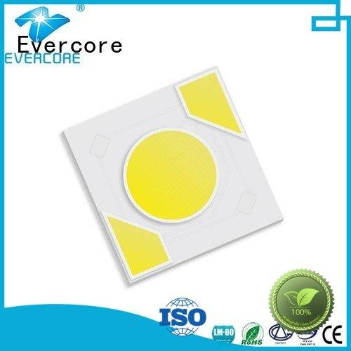 warm light led modules OEM Light Engine COB Modules Evercore