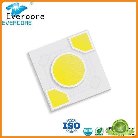 Evercore ac Light Engine COB Modules led modules