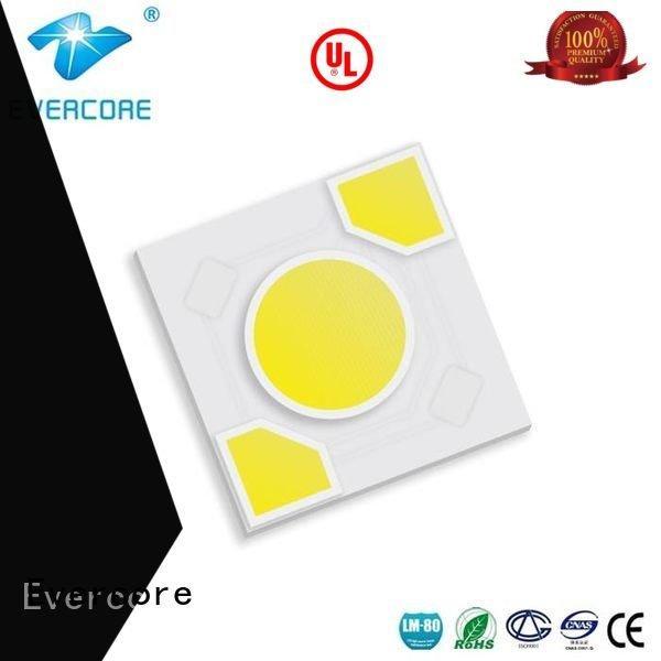 warm light cob led ac modules Evercore