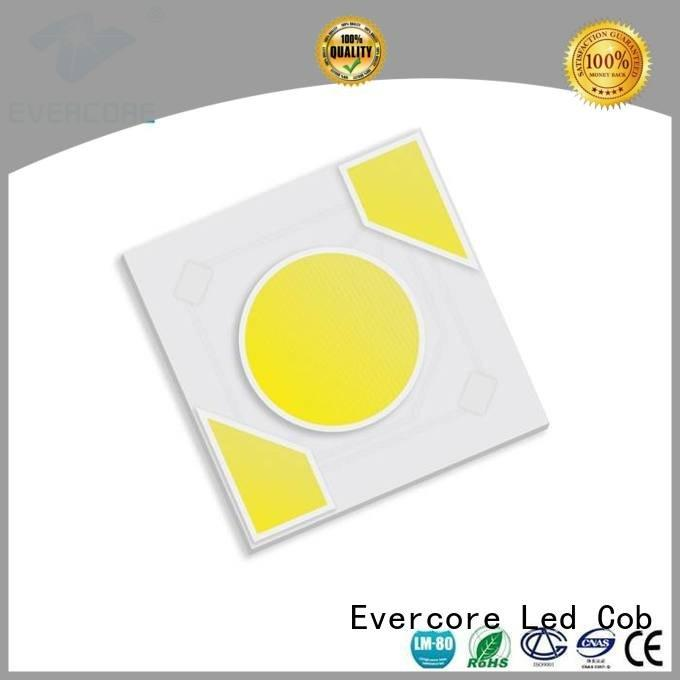 warm light cob ac Evercore Brand