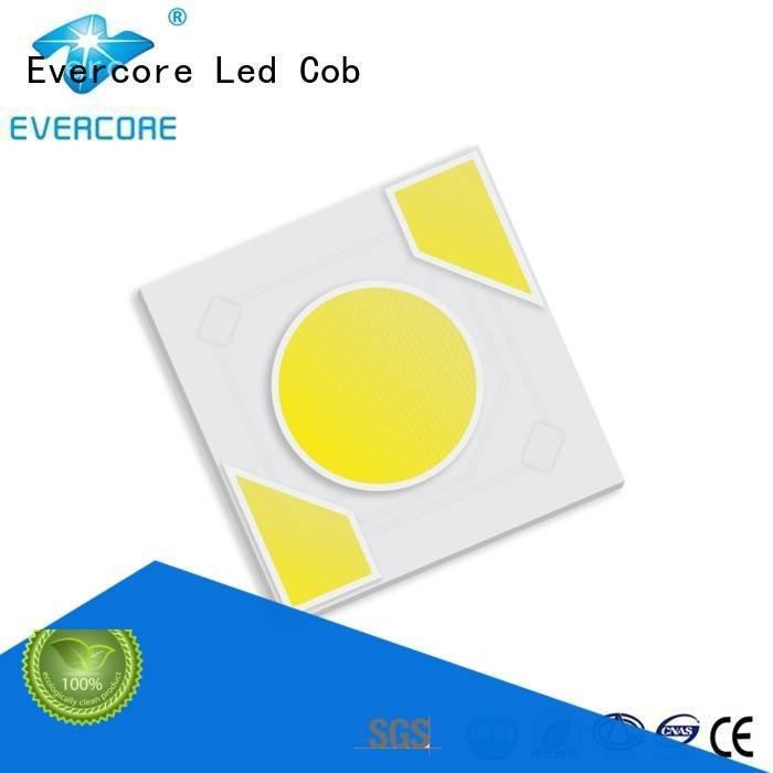 warm light cob Evercore Brand Light Engine COB Modules