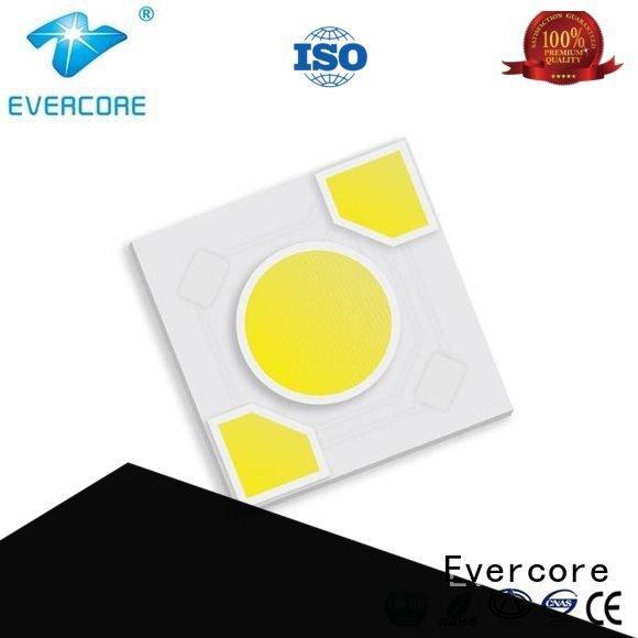 warm light ac cob Evercore Brand