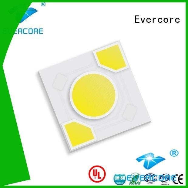 warm light led Light Engine COB Modules Evercore Brand