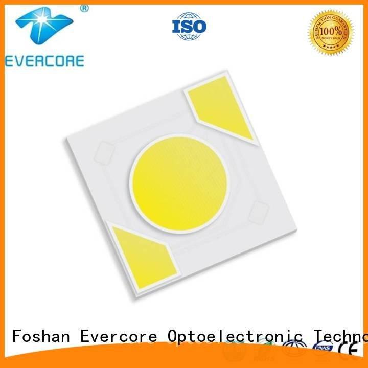 Evercore Brand cob modules led warm light