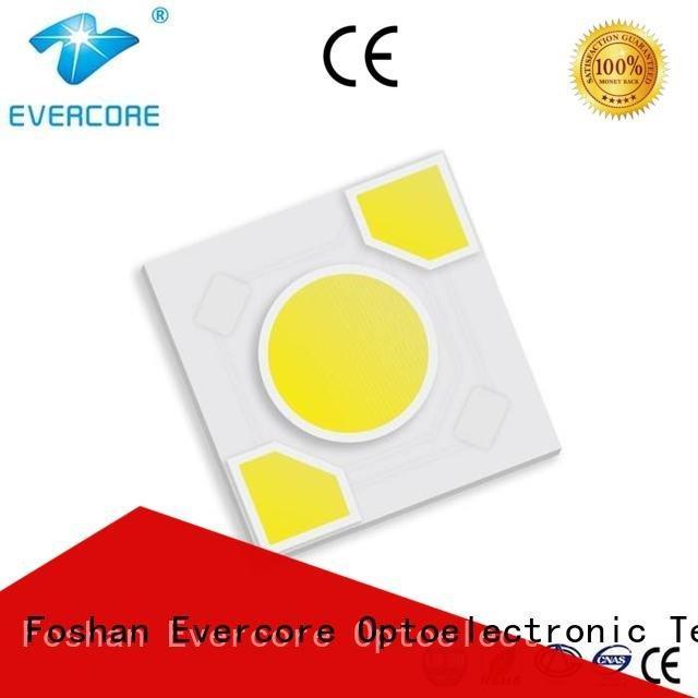 Evercore Brand modules warm light led cob