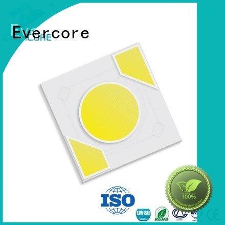 Evercore Brand modules ac led Light Engine COB Modules