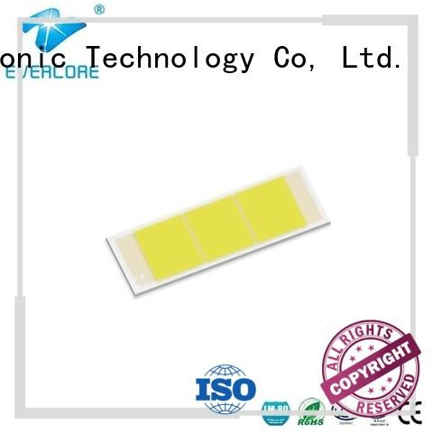 Evercore hot selling cob led producer for sale