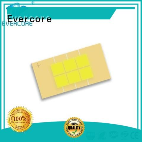 Evercore mm automotive led lights Guangdong for merchant