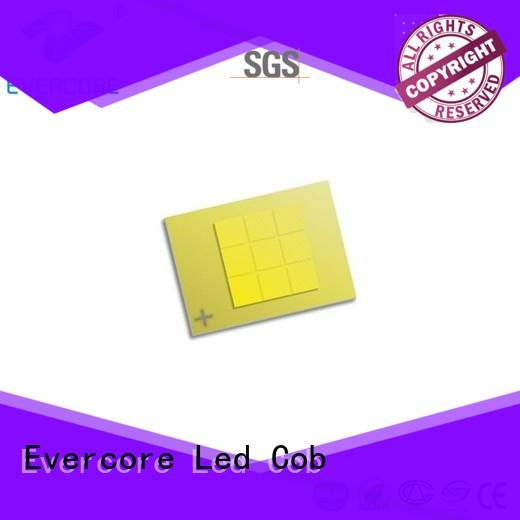 Evercore new automotive led lights producer for sale