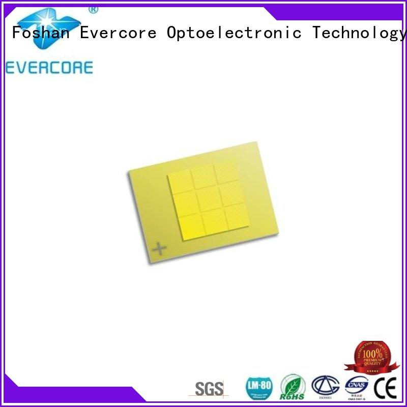 Evercore cc1860 cob led kit looking for a buyer for businessman