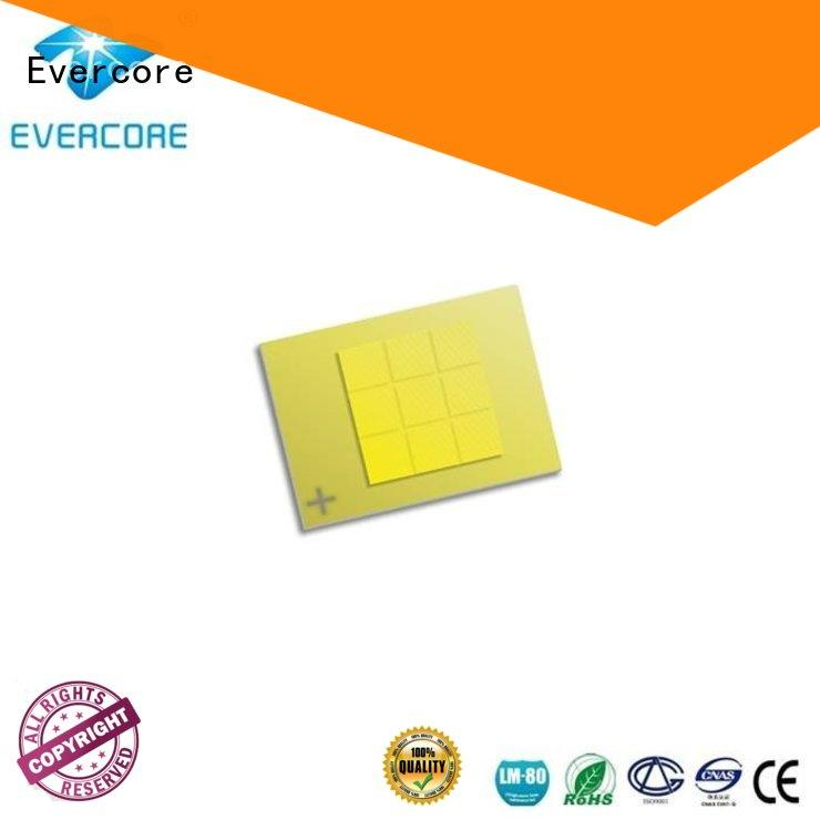 Evercore mm automotive led spotlights Guangdong for businessman