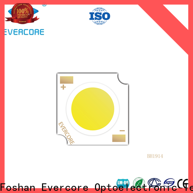 Evercore wholesale smd led chip Asia company for reseller