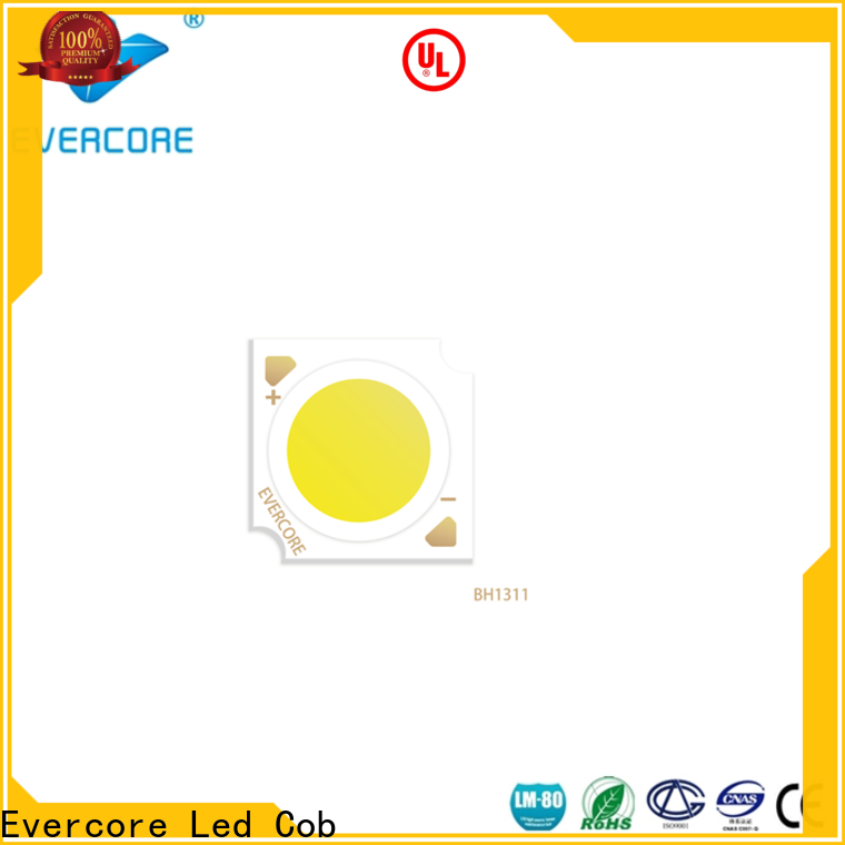 Evercore professional 6000k led color wholesale for wholesale