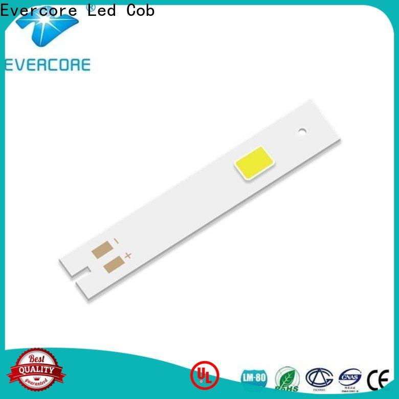Evercore hot selling cob led kit producer for merchant
