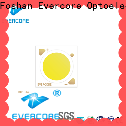 Evercore ra97 led downlight kit overseas market for sale