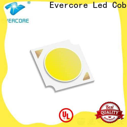Evercore Low cost Led Cob Chip factory for lighting