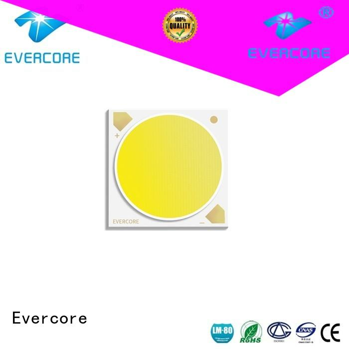 Evercore easy installation 2 color led bulk production for distribution