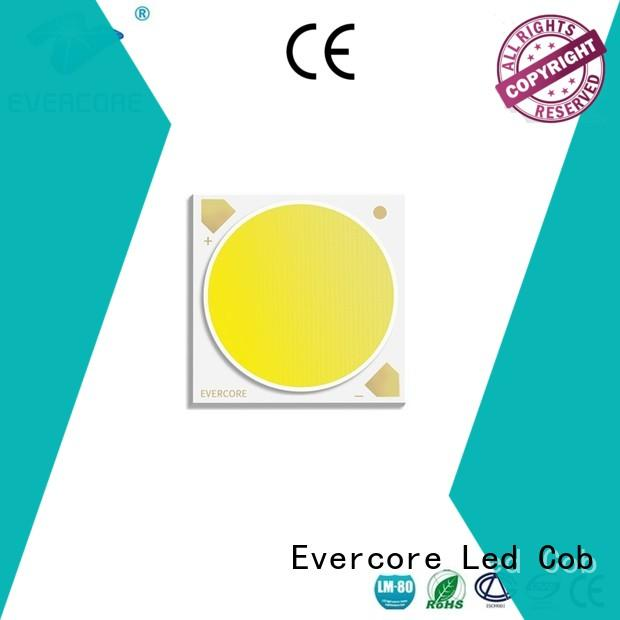 Evercore cob 2 color led bulk production for wholesale