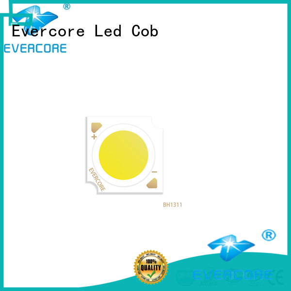 Evercore new generation commercial lighting cob wholesale for sale