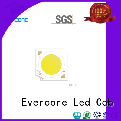 Evercore cheap Led Cob Chip manufacturer for lighting