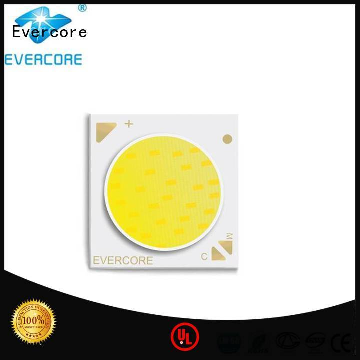 Evercore easy installation cob led bulb color for sale