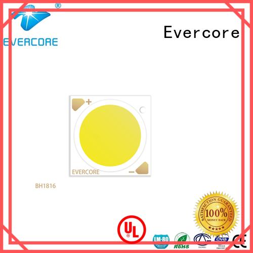Evercore lamp Cob Led supplier for lighting