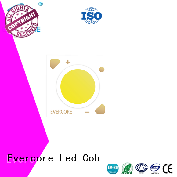 Evercore cheap Led Cob Chip factory for distribution