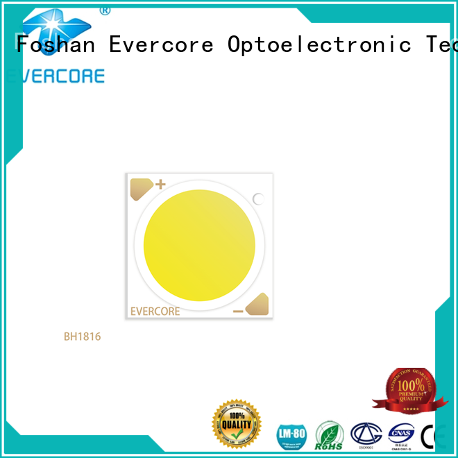 Evercore advanced technology led downlight kit customized for sale