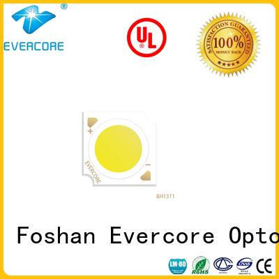 spot Cob Led manufacturer for lighting Evercore