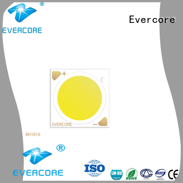 Evercore (bh1816 Led Cob Chip manufacturer for sale