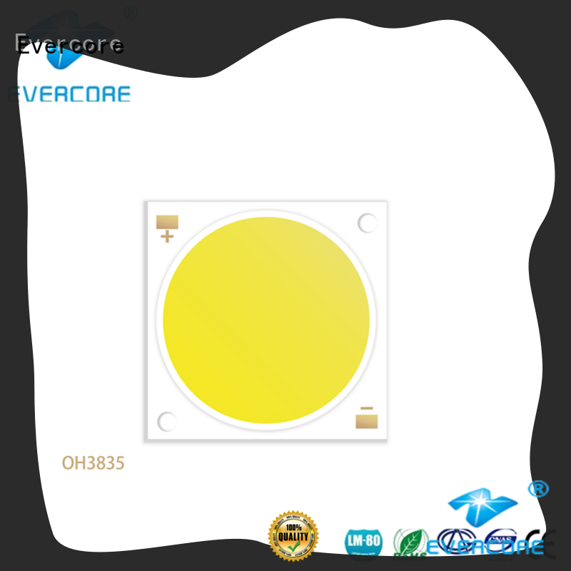 Evercore lamp spot led cob from China for lighting