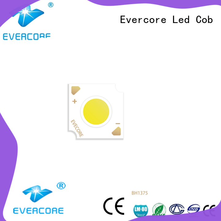 Evercore h19 Led Cob Chip supplier for distribution