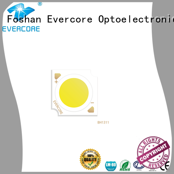 Evercore hotel foco led colores customized for distribution