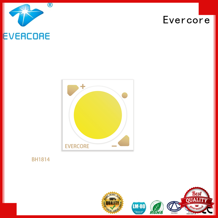 Evercore affordable downlight cob customized for market
