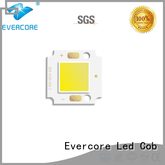 Evercore most popular outside garden lights from China for distribution