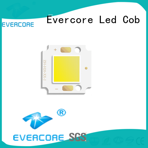 Evercore modules outside garden lights from China for distribution