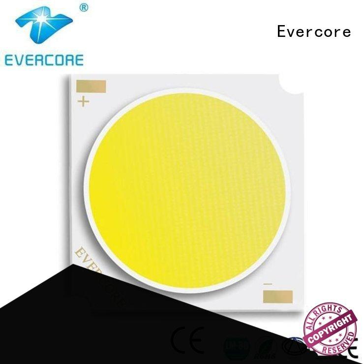 Hot cob cob led light lighting led Evercore Brand